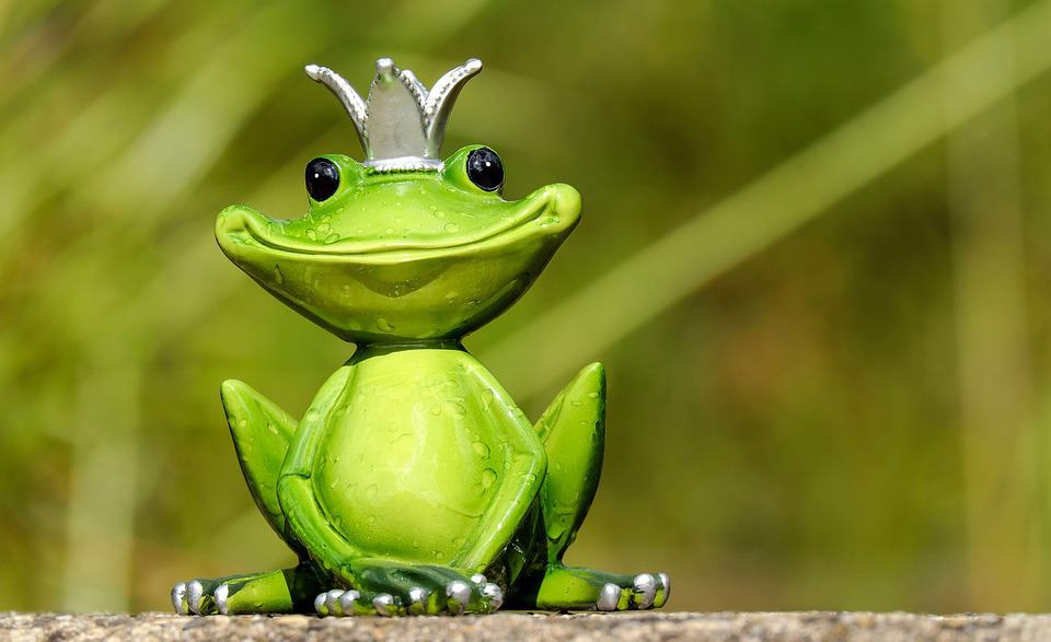 A frog king which might be able to live on $500 a month. No other king can.
