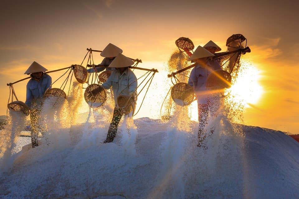 Vietnamese Workers in The Sun