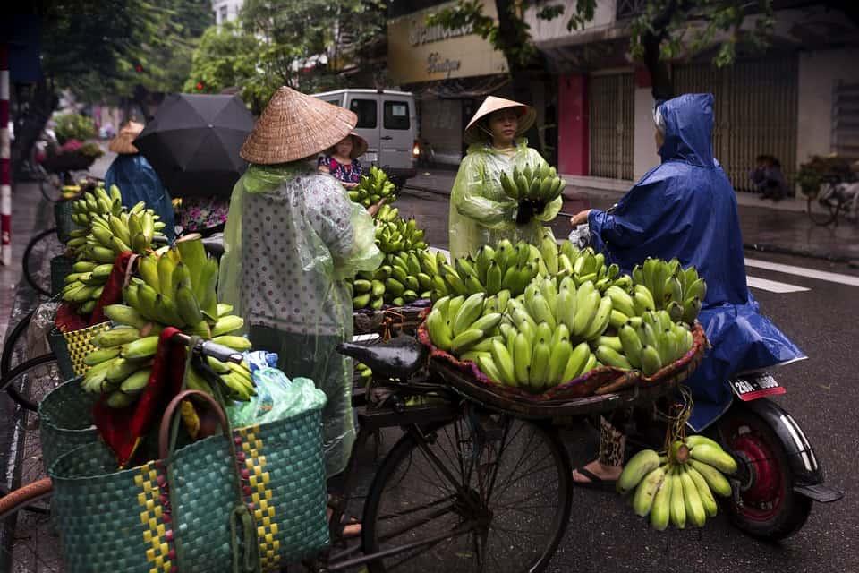 Street food vendors in Hanoi